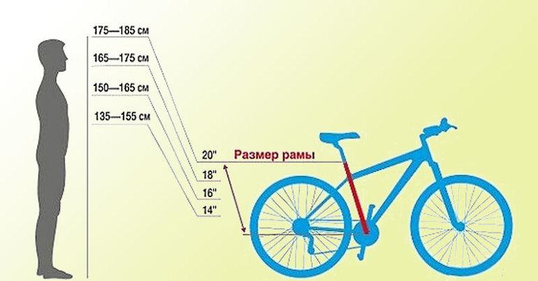Советы, которые помогут правильно выбрать велосипед для мужчины
