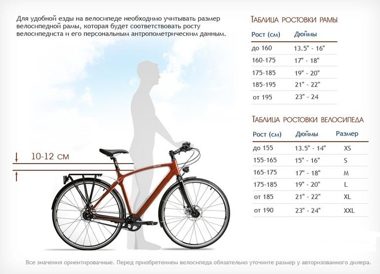 Как по росту выбирать велосипед