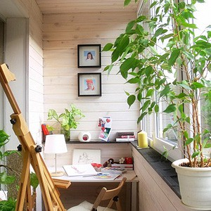 Как избавиться от голубей на балконе, ServiceYard-уют вашего дома в Ваших руках