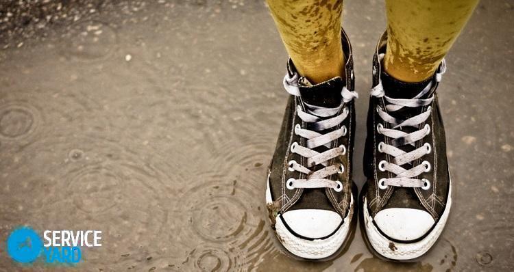 Как мыть кроссовки?