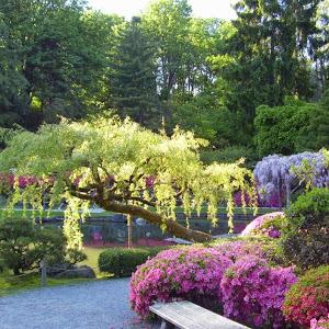 Препараты от вредителей сада
