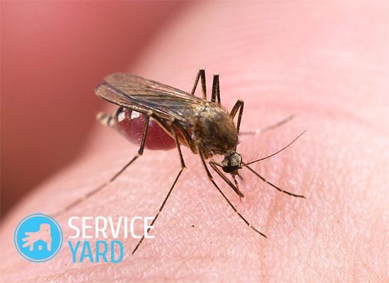 Натуральное средство от комаров