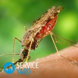 Средство от комаров в автомобиль