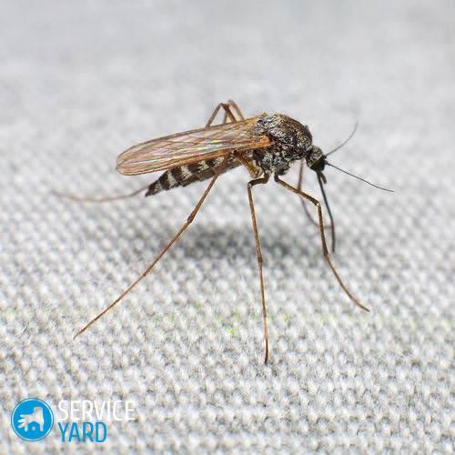 Лучшее средство от комаров отзывы