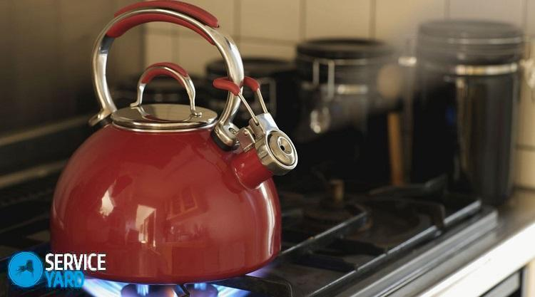 Чайник для газовой плиты - какой выбрать?