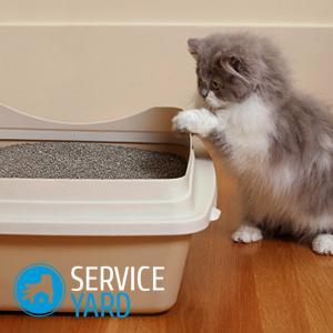 Чем мыть кошачий лоток чтобы не было запаха?