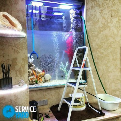 Чистка аквариума при минимальных затратах в домашних условиях - Уборка в квартире