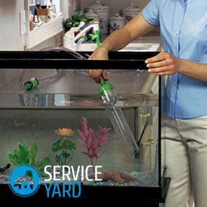 Чистка аквариума при минимальных затратах в домашних условиях