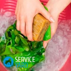Как отстирать 🥝 чистотел