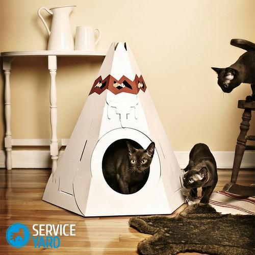 Как избавиться от шерсти кота; или кошки в доме - Уборка в квартире