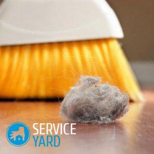 Из чего состоит пыль в квартире?