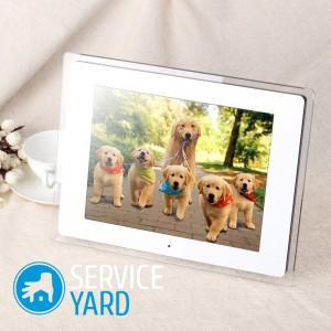 Цифровые фоторамки - как выбрать, ServiceYard-уют вашего дома в Ваших руках