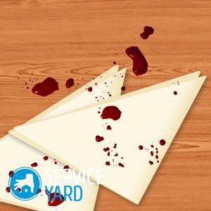 Как отстирать кровь с белого, ServiceYard-уют вашего дома в Ваших руках