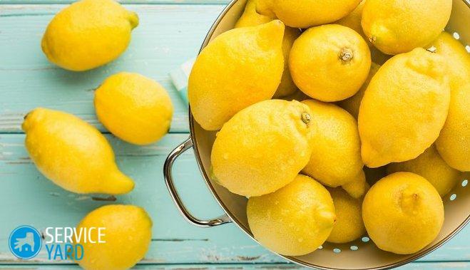 citroni-46352785