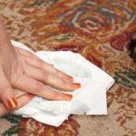 Как избавиться от запаха на ковре от мочи?