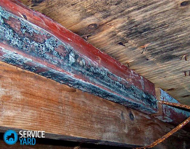 Как избавиться от плесени в подполе деревянного дома?