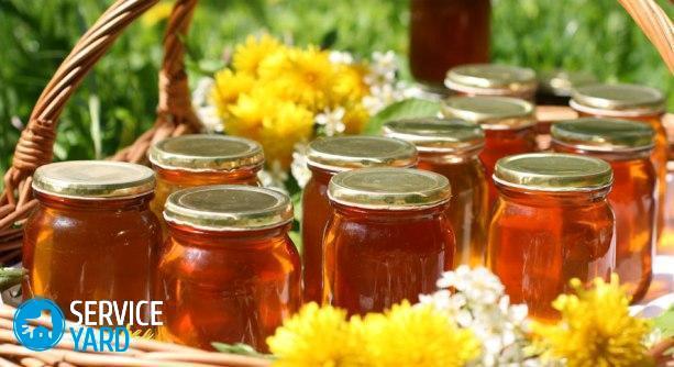 Как хранить мед в домашних условиях в квартире?