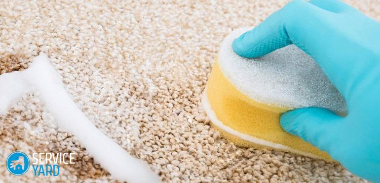 Чистка ковров Ванишем в домашних условиях - Уборка в квартире