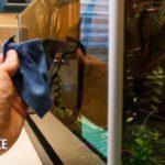 Как чистить стекла в аквариуме?