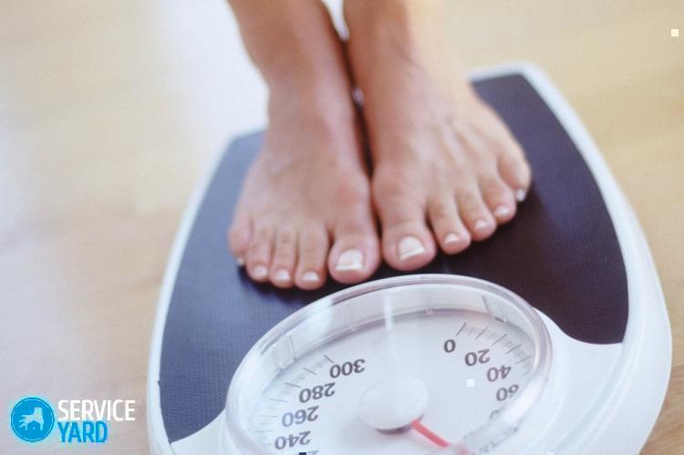 Какие весы лучше электронные или механические