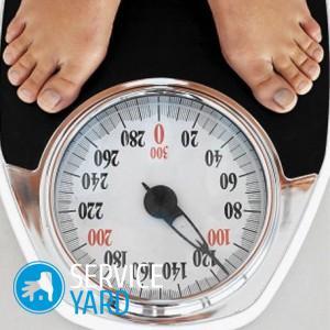 Какие весы лучше — электронные или механические?