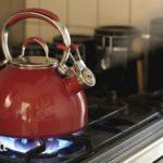 Какой чайник лучше купить для газовой плиты?