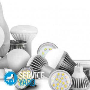 Какие лампочки лучше — светодиодные или энергосберегающие?