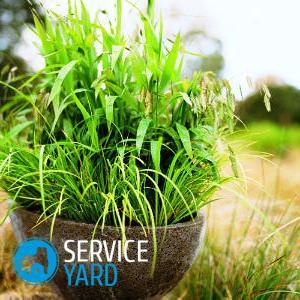 Вазоны для цветов своими руками, ServiceYard-уют вашего дома в Ваших руках