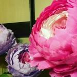 Как сделать большие цветы из бумаги своими руками для украшения зала?