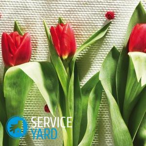 Как сшить тюльпаны из ткани своими руками?