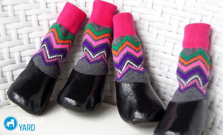 pet-obuv-dlya-sobak-simpatichnyie-vodonepronitsaemyiy-obuv-domashnih-sobak-teplyie-noski-sobaki-neskolzyashhey-zhivotnoe-nosok-obuvi
