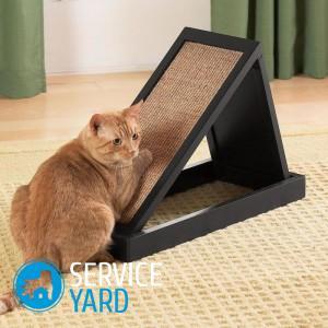 Как сделать когтеточку для кота?