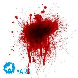Как вывести пятна от крови?