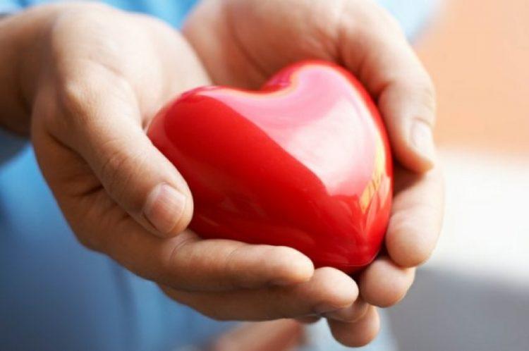 Пословицы про милосердие: 50 поговорок со смыслом ✍