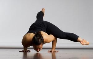 Хатха-йога как основное направление йоги